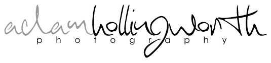 Adam Hollingworth Photography – Brighton & London Wedding & Corporate Photographer logo